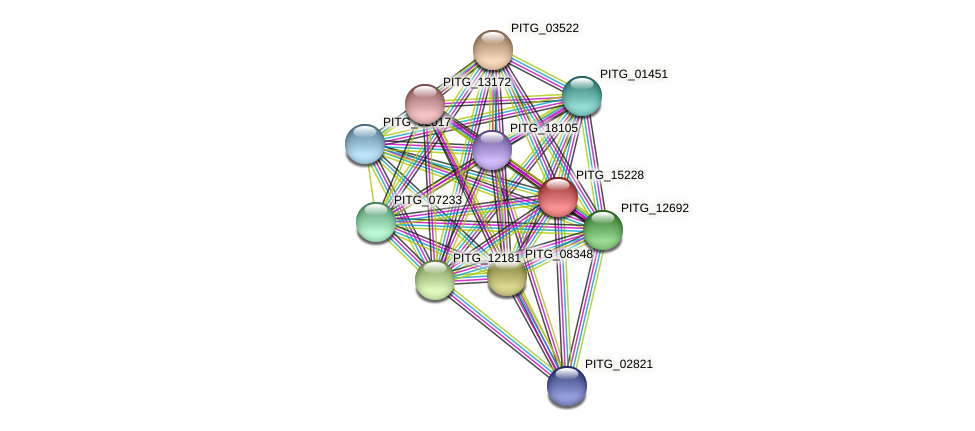 PITG_15228 protein (Phytophthora infestans) - STRING interaction network