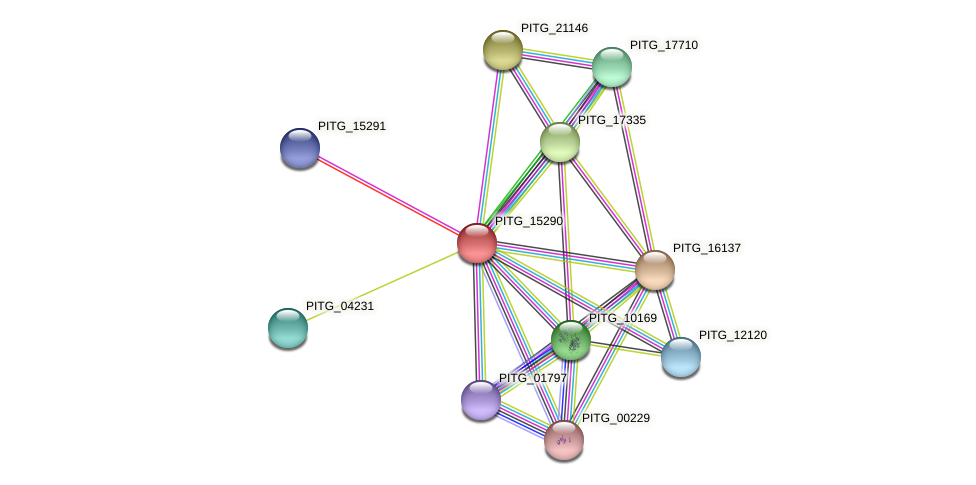 PITG_15290 protein (Phytophthora infestans) - STRING interaction network