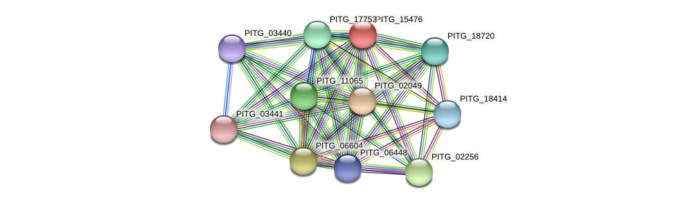 PITG_15476 protein (Phytophthora infestans) - STRING interaction network