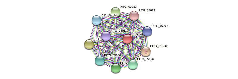 PITG_15653 protein (Phytophthora infestans) - STRING interaction network