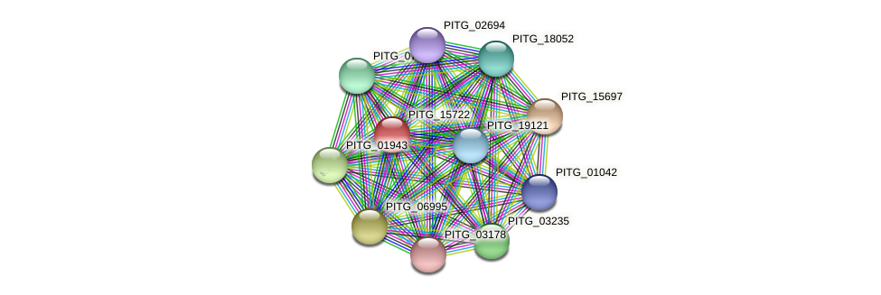 PITG_15722 protein (Phytophthora infestans) - STRING interaction network
