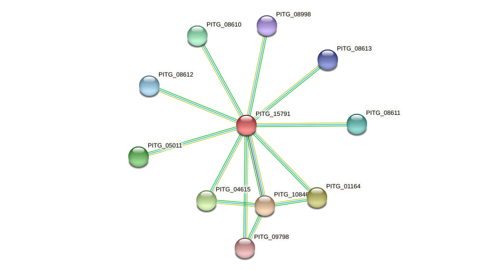 PITG_15791 protein (Phytophthora infestans) - STRING interaction network