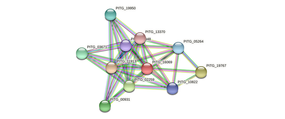 PITG_16069 protein (Phytophthora infestans) - STRING interaction network