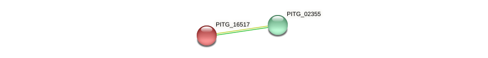 PITG_16517 protein (Phytophthora infestans) - STRING interaction network