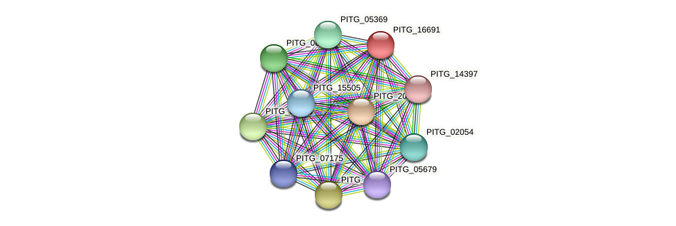 PITG_16691 protein (Phytophthora infestans) - STRING interaction network