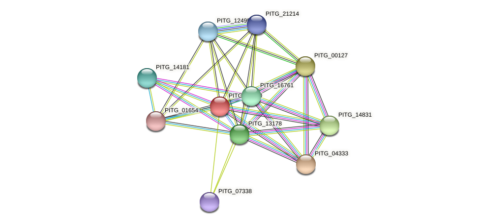 PITG_16760 protein (Phytophthora infestans) - STRING interaction network