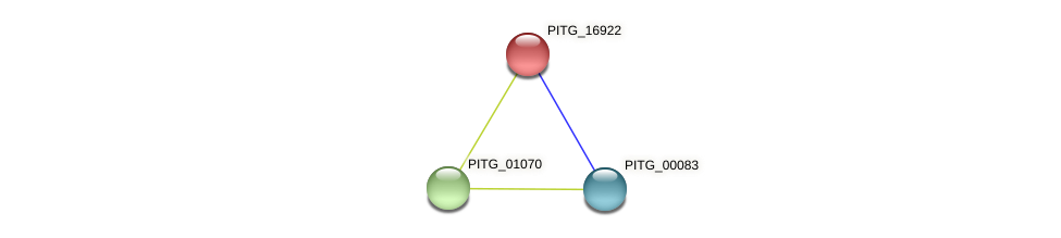 PITG_16922 protein (Phytophthora infestans) - STRING interaction network