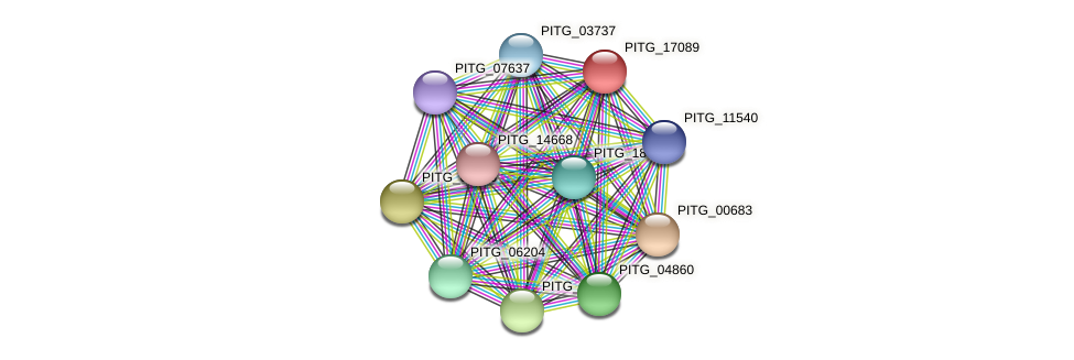 PITG_17089 protein (Phytophthora infestans) - STRING interaction network