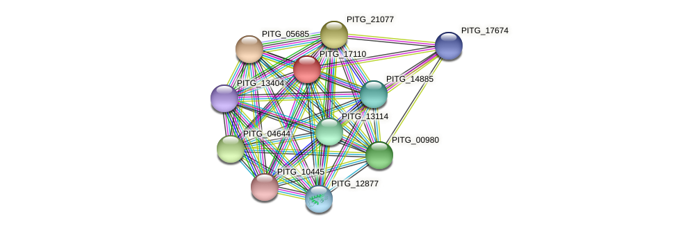 PITG_17110 protein (Phytophthora infestans) - STRING interaction network