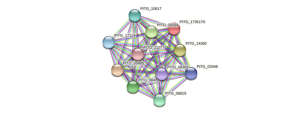 PITG_17351 protein (Phytophthora infestans) - STRING interaction network