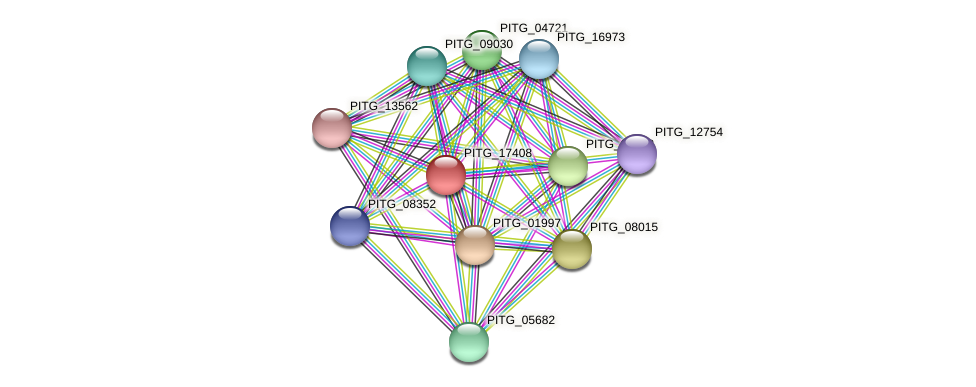 PITG_17408 protein (Phytophthora infestans) - STRING interaction network