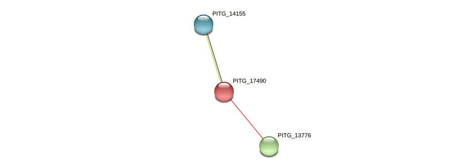 PITG_17490 protein (Phytophthora infestans) - STRING interaction network
