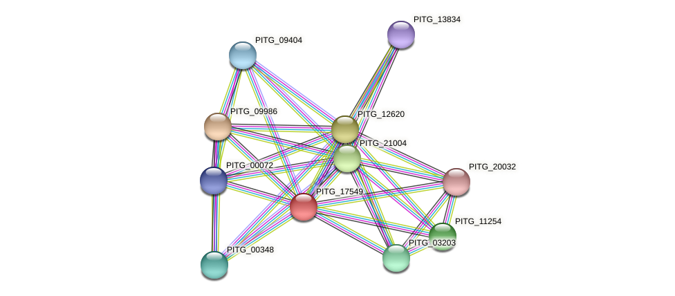 PITG_17549 protein (Phytophthora infestans) - STRING interaction network