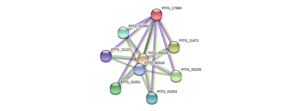PITG_17660 protein (Phytophthora infestans) - STRING interaction network