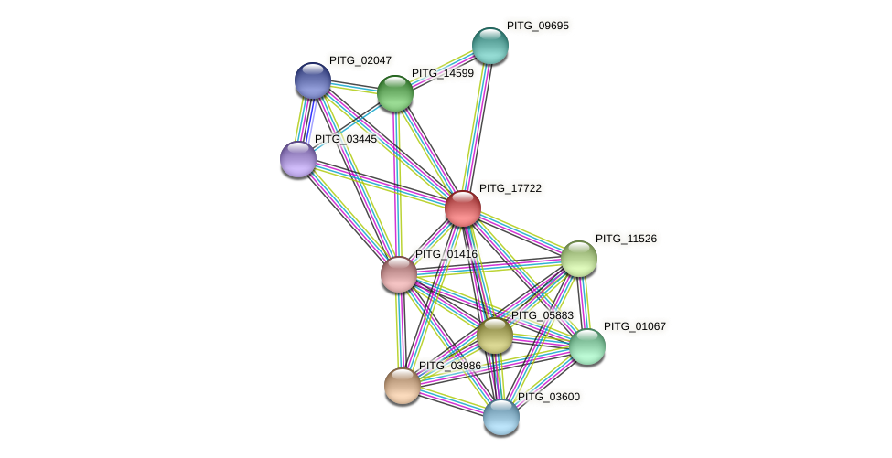 PITG_17722 protein (Phytophthora infestans) - STRING interaction network