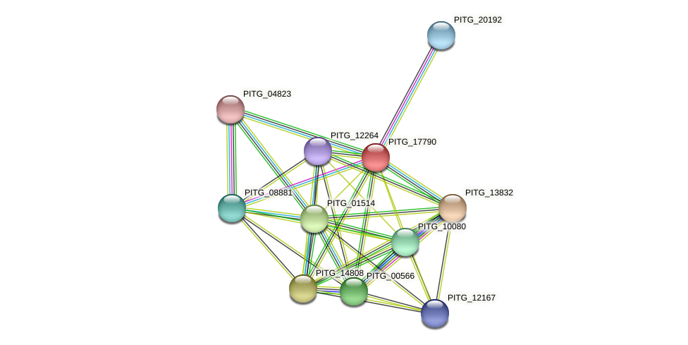 PITG_17790 protein (Phytophthora infestans) - STRING interaction network