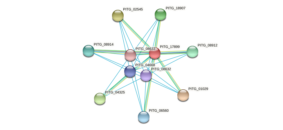 PITG_17899 protein (Phytophthora infestans) - STRING interaction network