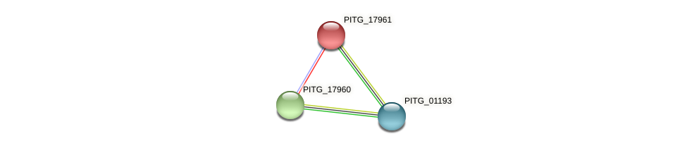 PITG_17961 protein (Phytophthora infestans) - STRING interaction network