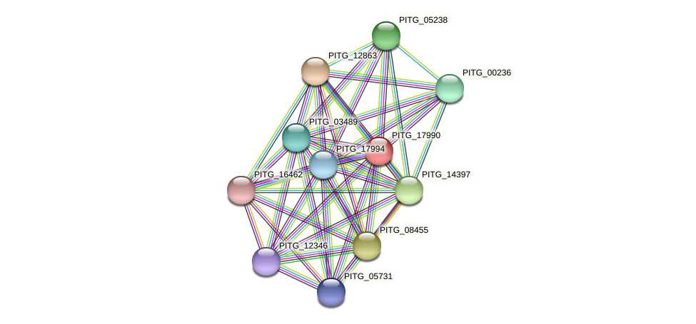 PITG_17990 protein (Phytophthora infestans) - STRING interaction network