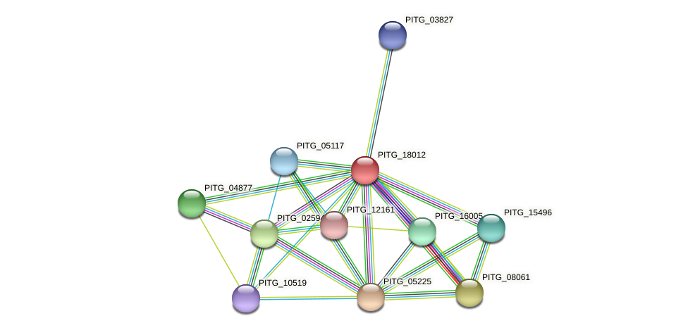 PITG_18012 protein (Phytophthora infestans) - STRING interaction network