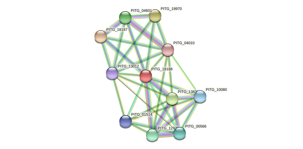 PITG_18188 protein (Phytophthora infestans) - STRING interaction network