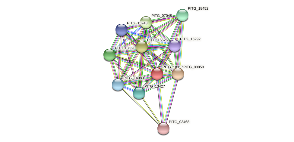 PITG_18317 protein (Phytophthora infestans) - STRING interaction network