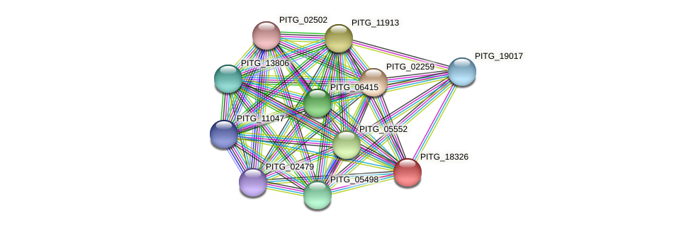 PITG_18326 protein (Phytophthora infestans) - STRING interaction network