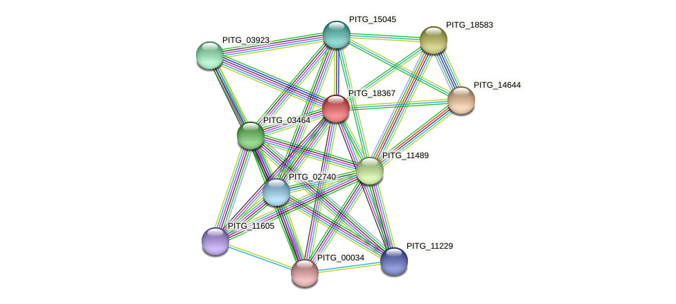 PITG_18367 protein (Phytophthora infestans) - STRING interaction network