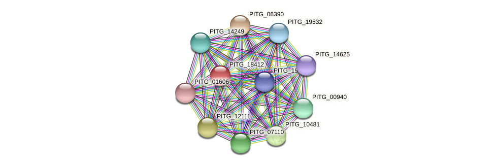 PITG_18412 protein (Phytophthora infestans) - STRING interaction network
