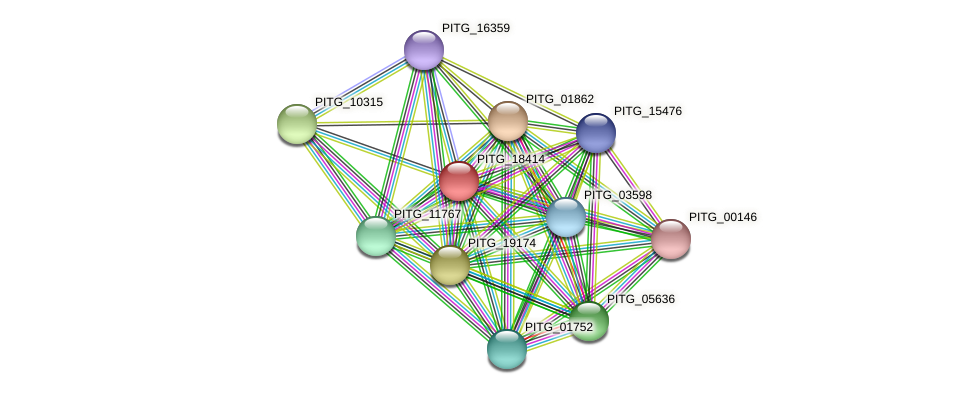 PITG_18414 protein (Phytophthora infestans) - STRING interaction network