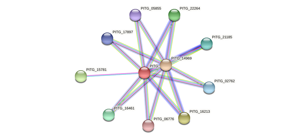 PITG_18473 protein (Phytophthora infestans) - STRING interaction network