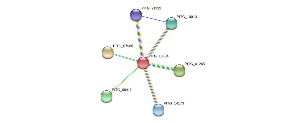 PITG_18534 protein (Phytophthora infestans) - STRING interaction network
