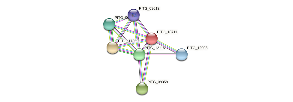 PITG_18711 protein (Phytophthora infestans) - STRING interaction network