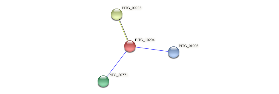 PITG_19294 protein (Phytophthora infestans) - STRING interaction network