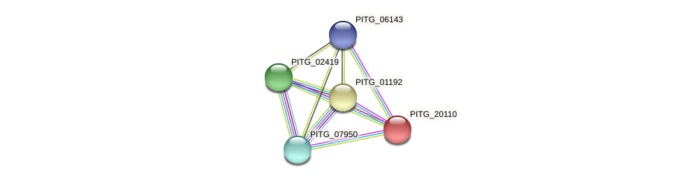 PITG_20110 protein (Phytophthora infestans) - STRING interaction network