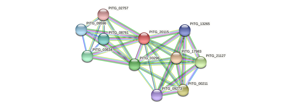 PITG_20115 protein (Phytophthora infestans) - STRING interaction network