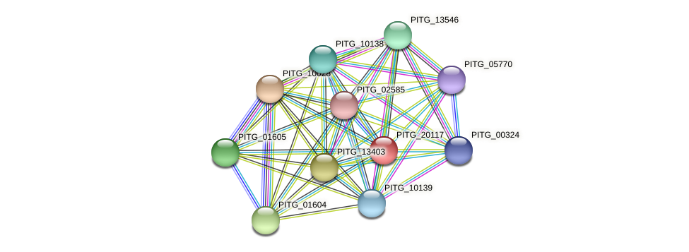 PITG_20117 protein (Phytophthora infestans) - STRING interaction network