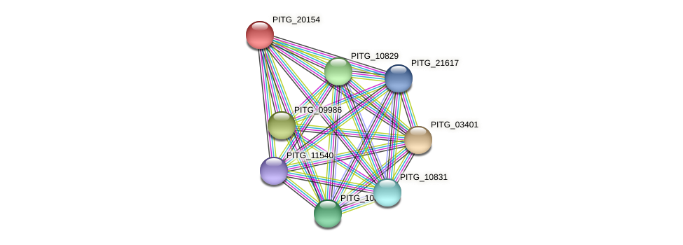 PITG_20154 protein (Phytophthora infestans) - STRING interaction network