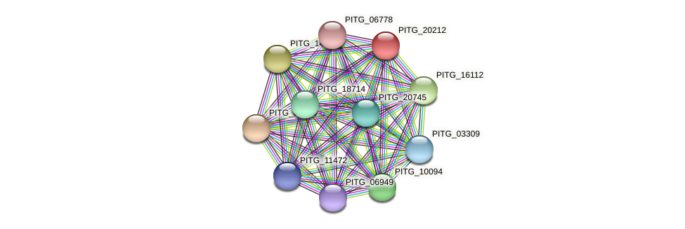 PITG_20212 protein (Phytophthora infestans) - STRING interaction network