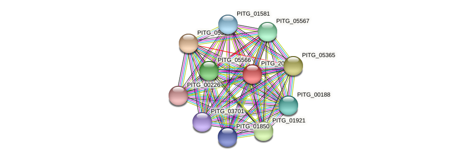 PITG_20287 protein (Phytophthora infestans) - STRING interaction network