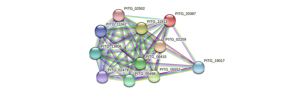 PITG_20387 protein (Phytophthora infestans) - STRING interaction network