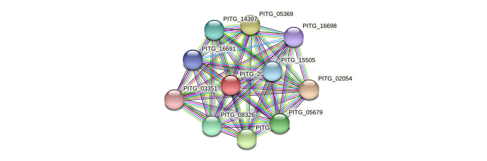 PITG_20527 protein (Phytophthora infestans) - STRING interaction network