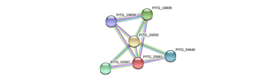 PITG_20681 protein (Phytophthora infestans) - STRING interaction network