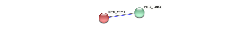 PITG_20711 protein (Phytophthora infestans) - STRING interaction network