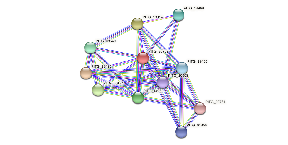 PITG_20769 protein (Phytophthora infestans) - STRING interaction network
