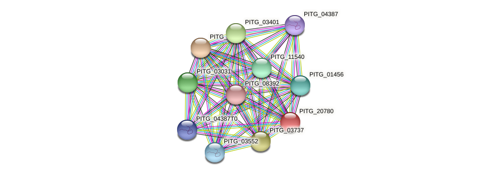 PITG_20780 protein (Phytophthora infestans) - STRING interaction network