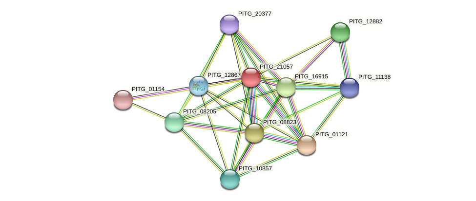 PITG_21057 protein (Phytophthora infestans) - STRING interaction network
