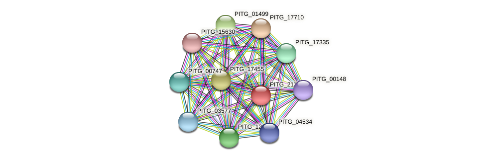 PITG_21146 protein (Phytophthora infestans) - STRING interaction network