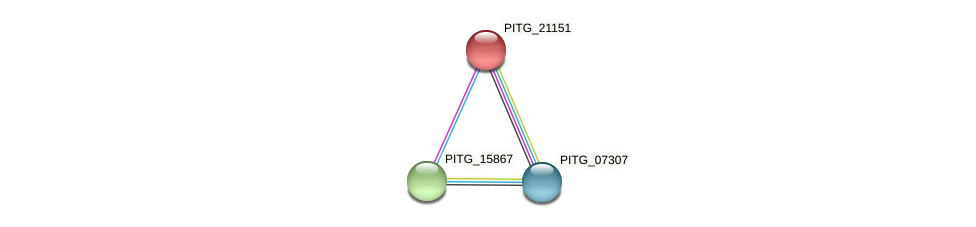 PITG_21151 protein (Phytophthora infestans) - STRING interaction network