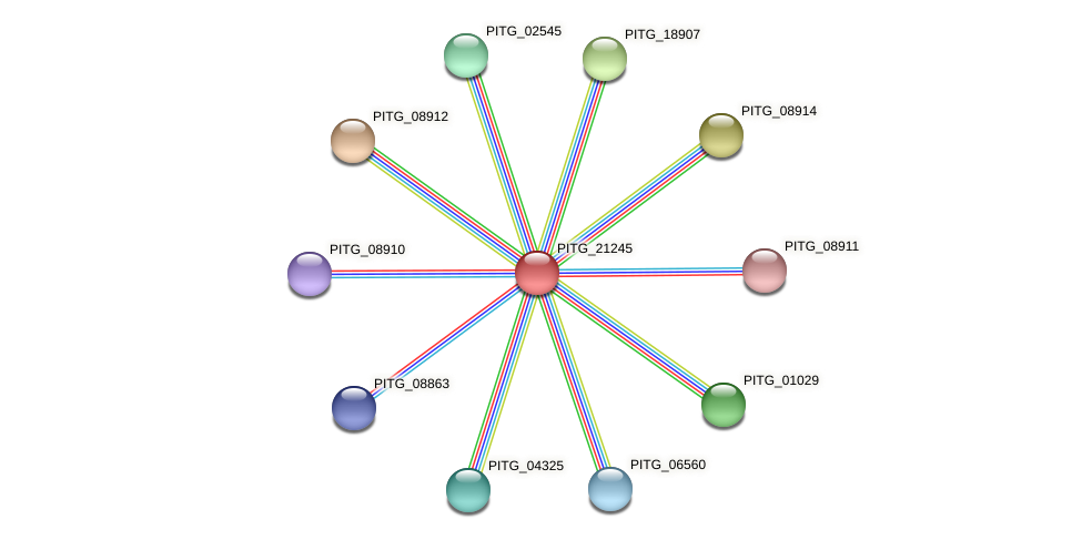 PITG_21245 protein (Phytophthora infestans) - STRING interaction network